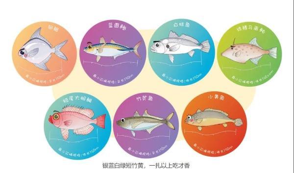 保护幼鱼支持可持续渔业 共绘海洋生物多样性保护蓝图