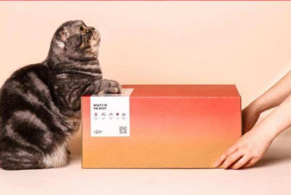 够实力,才够炫!魔力猫盒诠释新生代养宠方式