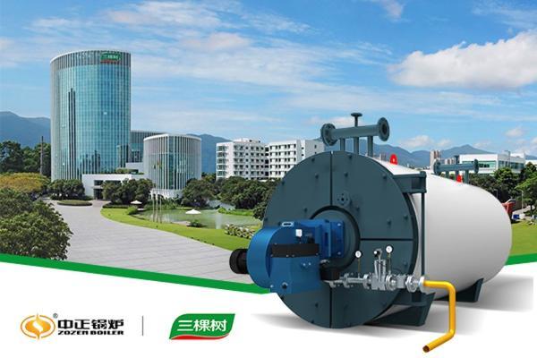 中正燃气导热油锅炉为三叔涂料生产基地扩容增添绿色动力