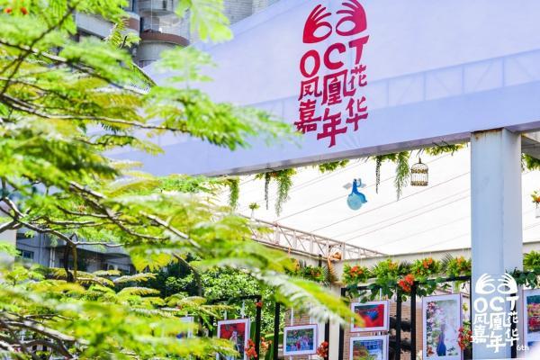 OCT凤凰花嘉年华:以花为媒、坚守初心 助力城市美好生活