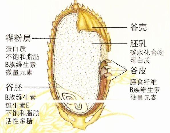想让妈妈吃的更好些!中粮福临门自然香大米9%黄金碾磨 保留原生美味!