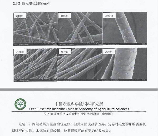 优朗携手中国农科院 打造科学专业功能性宠粮