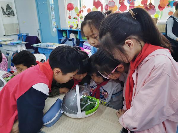 开展STEAM教育,科学罐头走进杭州天长小学