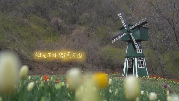 为所爱,尽所能!北大荒完达山乳业《爱的旅途》第五季全新启程!