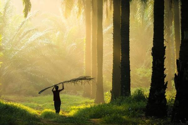 """亿滋国际通过""""享受好零食""""计划加速 向2025年环境、社会与公司治理目标迈进"""