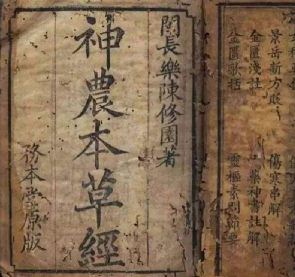 拥有3000多年入药史的东方积雪草助力 植物医生成功破解敏感肌难题
