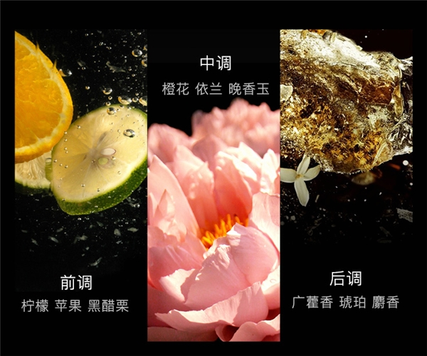 刘涛同款FORVIL温莎森林鱼子酱发膜,到底有什么魔力让众星对它宠爱有加?