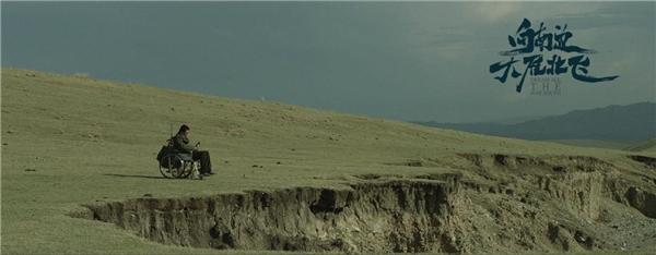 电影《向南边大雁北飞》穷途末路一场戏