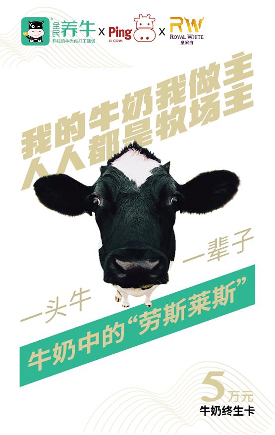 奶业新趋势,全民养牛推重磅奶卡,买牛奶不如买头牛