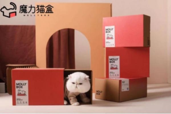 全网首个亲子盲盒耀世而来,魔力猫盒解锁全新撸猫大法