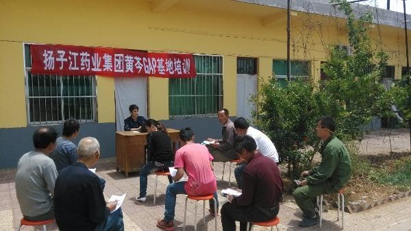 一分部署,九分落实——扬子江药业集团乡村振兴在行动