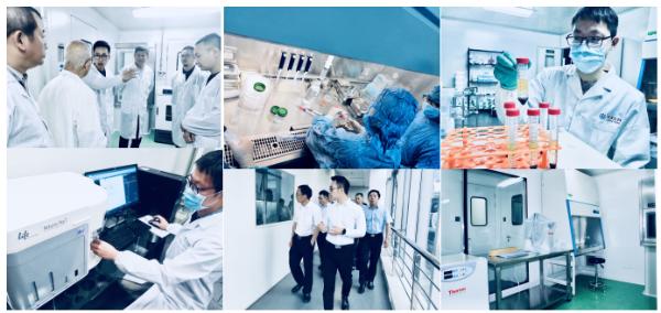 荣泽生物集团启动IPO上市辅导,专注细胞与基因技术转化