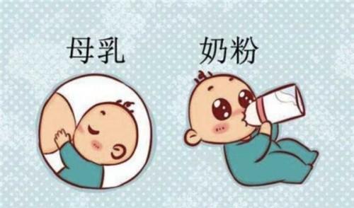 纯母乳喂养的宝宝转奶选什么?多美滋致粹营养好吸收