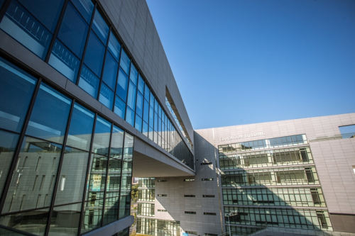 广东以色列理工学院有什么专业比较值得考虑