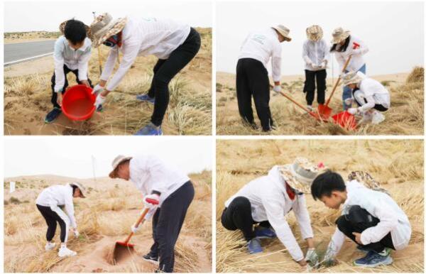 """绿动未来""""沙漠边的孩子""""公益植树行再赴甘肃古浪"""