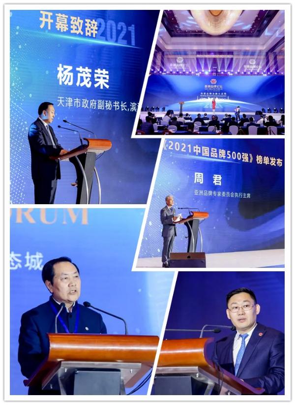 """莱特妮丝上榜""""2021中国品牌500强"""""""