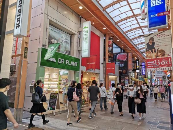 植物医生展示中国品牌风尚 引领全球消费市场