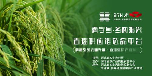 """京津冀新媒体直播电商基地托起河北""""冀字号""""农业新增量"""
