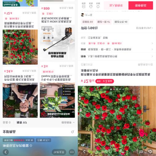 """抖音电商开启""""抖in迷你花园节"""",园艺视频创作者坤哥教600万人养花"""