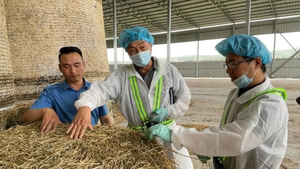 蒙牛集团深入企业合作,助力牧场降本增效