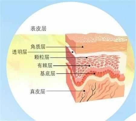 肌底液怎么用才是正确方法?正确使用才能有效!