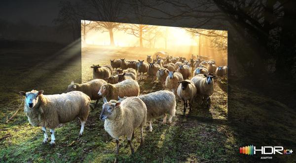 畅快观影,三星Neo QLED 8K电视助力打造私人专属的家庭影院