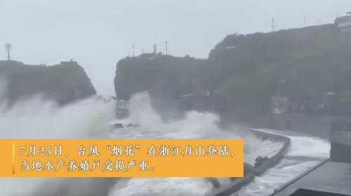 台风过境蟹农上架首批舟山梭子蟹,聚划算聚新鲜启动预售
