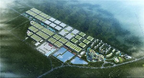 深化政企协作沟通 加快推进湘南项目建设