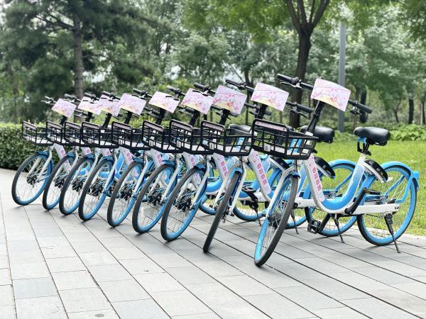 小鹿杏仁儿联手哈啰出行 这波合作很强势, 骑单车抽盲盒探索城市美好