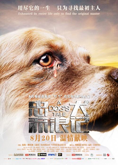 电影《忠犬流浪记》主题曲MV上线 浓浓人狗情引广泛共鸣