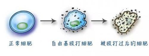 蓝氧,或将成为变革未来行业的新力量