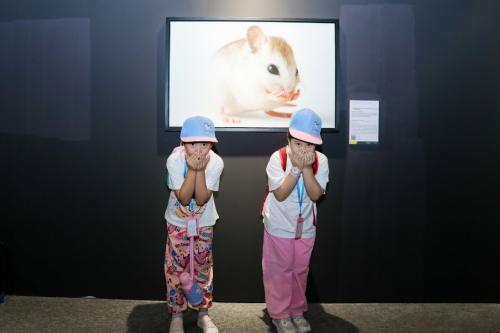 """抓住暑假尾巴!横琴这个汇集全球珍稀动物""""最美肖像""""的展览不容错过"""
