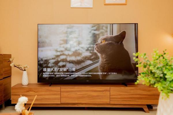 新一代华为智慧屏V系列首销:帝瓦雷联合调音尽享极致影音体验