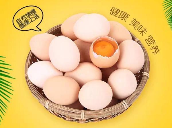 孕妇可以吃鸡蛋吗?怎么吃更有营养?