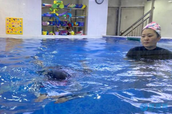 什么样的婴儿游泳馆才能在未来活得很好