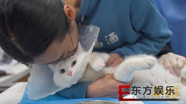 爱奇艺纪录片《离不开你》直戳泪点 从宠物离世学会爱与珍惜