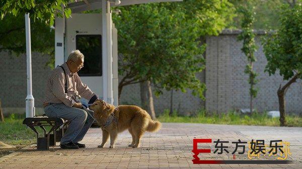 爱奇艺纪录片《离不开你》暖心上线,网友:太好哭了!
