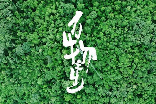 咪咕视讯与4K花园联合出品,国内首部8K生态人文纪录片《万物之生》先导片发布