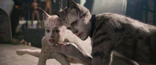 《猫》音乐剧作者安德鲁·洛伊德·韦伯:被电影版伤到买了一条狗