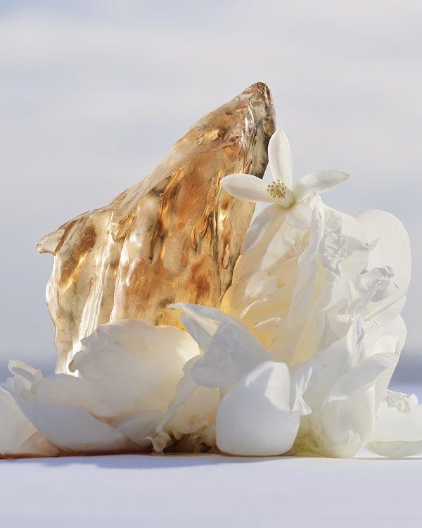 这瓶美到像艺术品!LV最新顶级香水『Les Extraits系列』展现每一阶段嗅觉类别精华 !