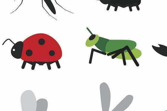 昆虫是营养丰富的绿色饮食,你愿意吃吗?