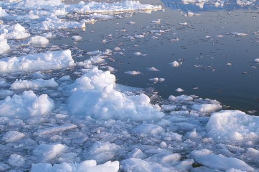 北极冰川融化可能会释放危险病毒,但不是世界末日!