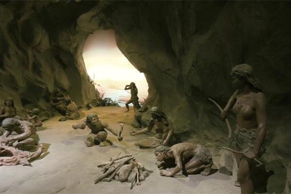 用古DNA解码人类历史,可追溯到55万年前