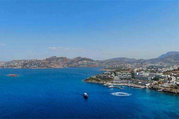爱琴海现16公斤巨型乌贼 科学家称因海水温度升高