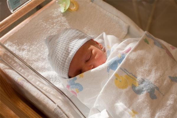为什么12%的早产儿会患坏死性小肠结肠炎?研究表明与肠神经胶质细胞有关