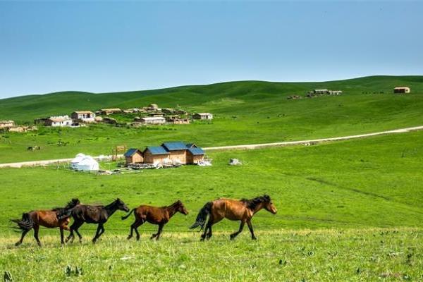 """新研究揭示了欧亚草原牧民的迁徙原因,竟然是因为""""喝马奶"""""""