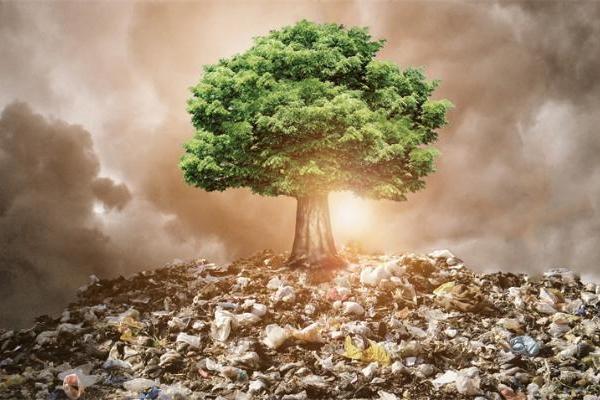 塑料污染太严重!NSF拨款400万美元用于对可回收塑料的研究
