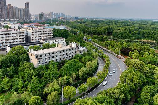 城市政府应提高大众对绿色基础设施的认识,更好地应对气候变化