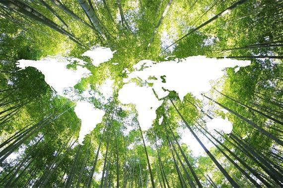 我国设立全球首个SDGs大数据研究机构,为可持续发展提供科研支撑