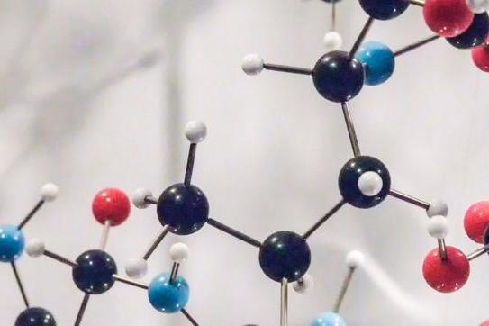 设计新材料的基础:肽引导自组装,形成纳米或微米尺度的结构
